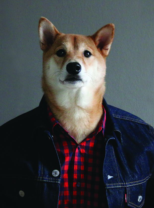 Excerpted from Menswear Dog Presents: The New Classics by David Fung and Yena Kim (Artisan Books)