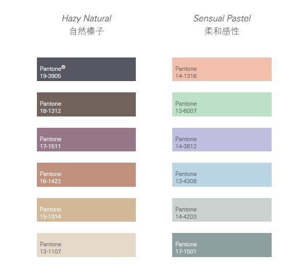 Pantone Colors Enigmatic