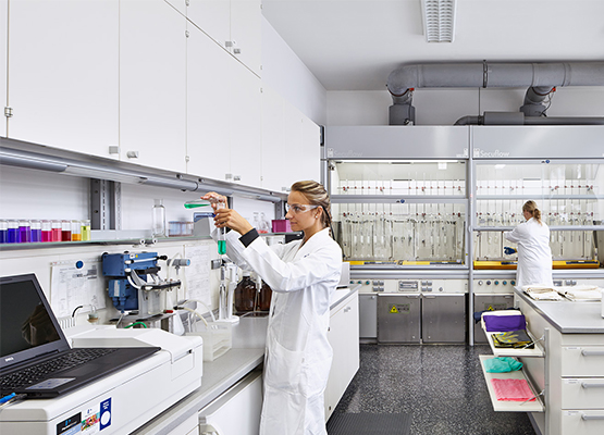 Laboratory service at the Rudolf Group