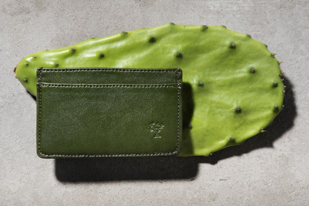 Cactus leather case by Cacto