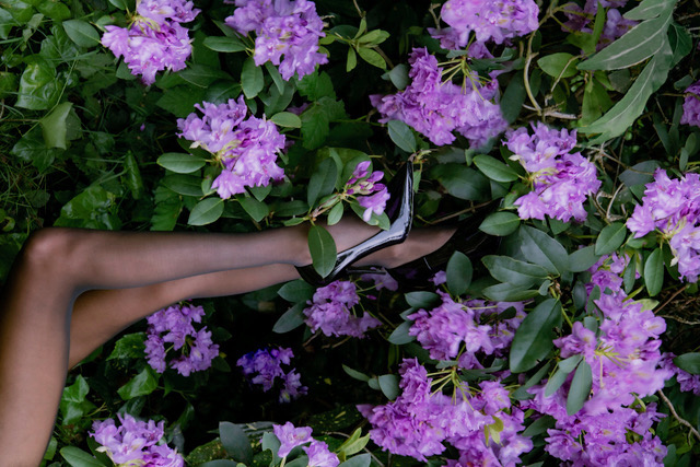 Can Hēdoïne change the legwear game?