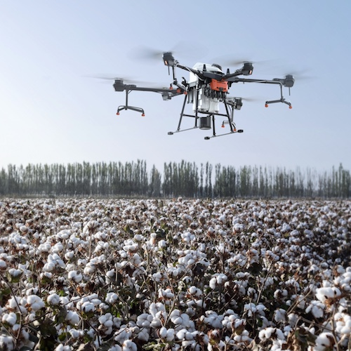 Neela initiative using drone technology to spray fertilizer on the crop for supporting local farmers