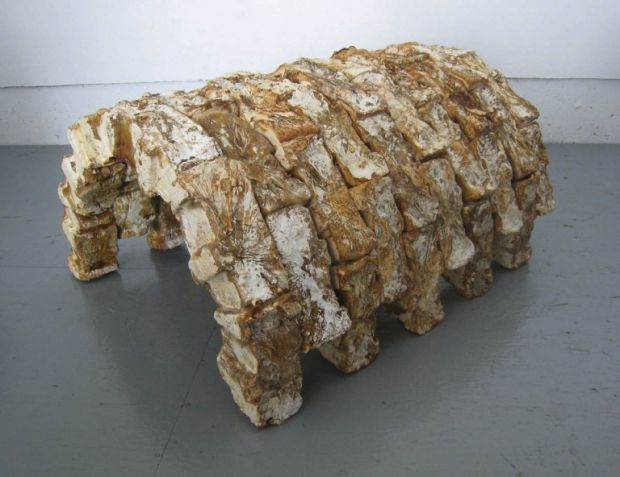 Artwork made of mushrooms by MycoWorks co-founder and artist Philip Ross, 2011