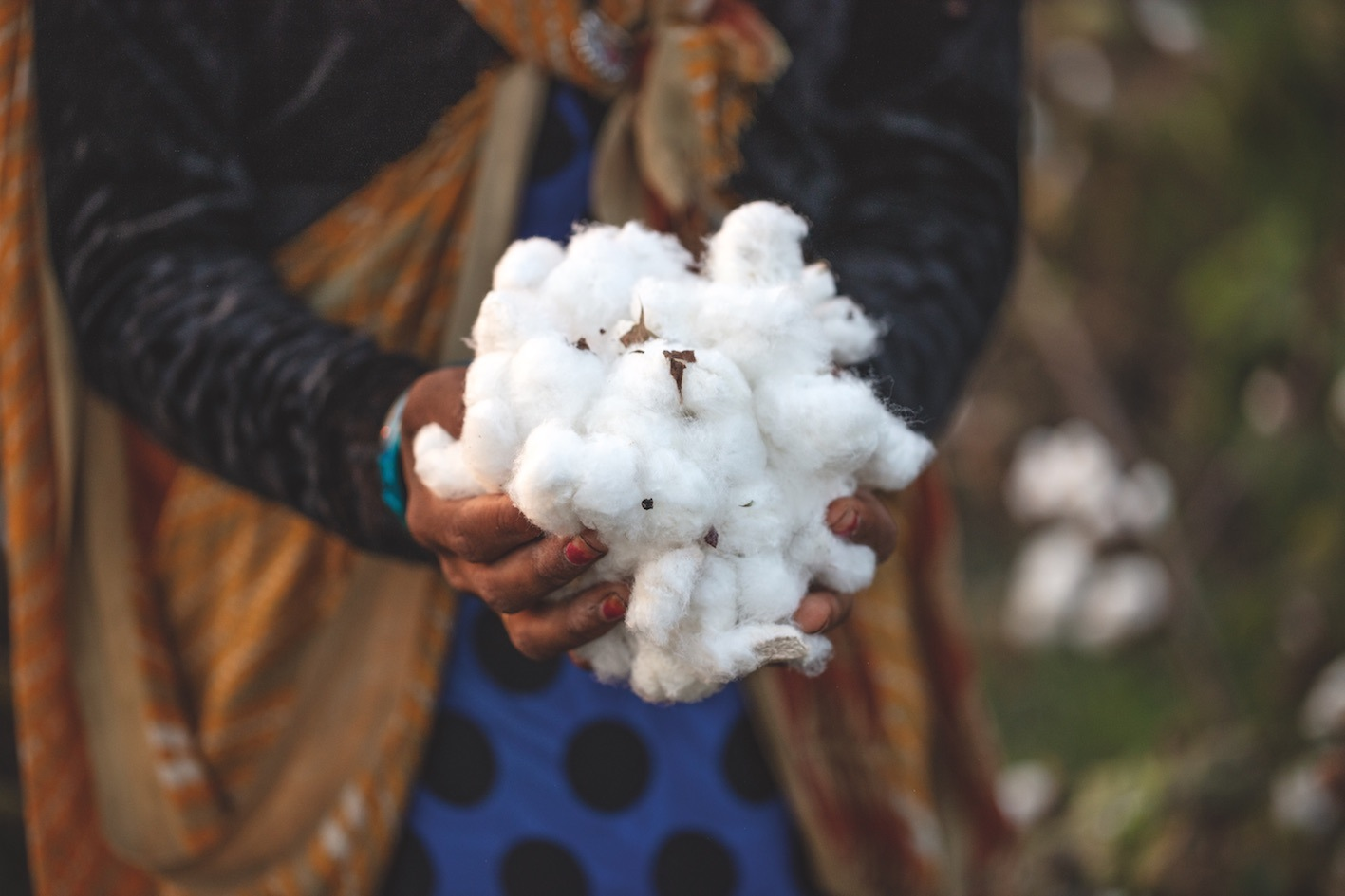 Will regenerative agriculture change fashion?